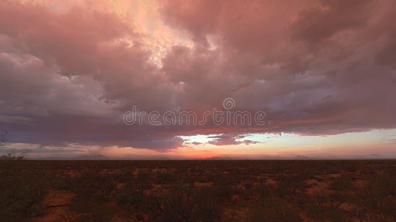Désert de coucher du soleil photos libres de droits
