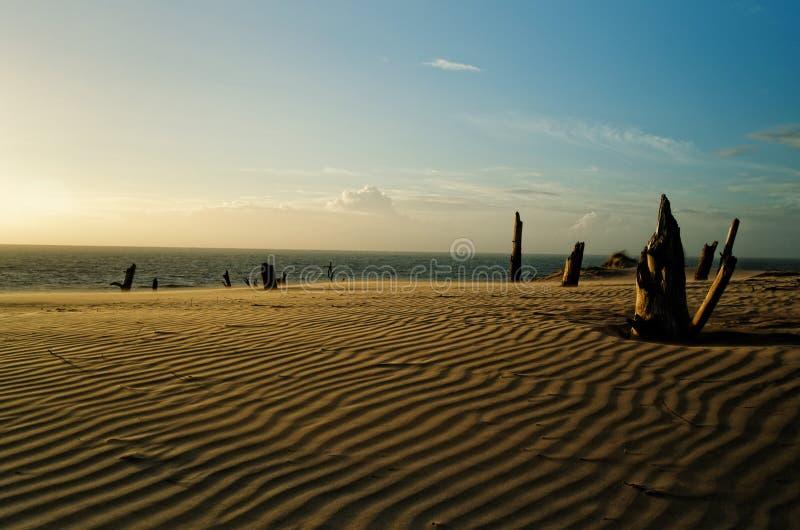 Désert De Dunes Domaine Public Gratuitement Cc0 Image