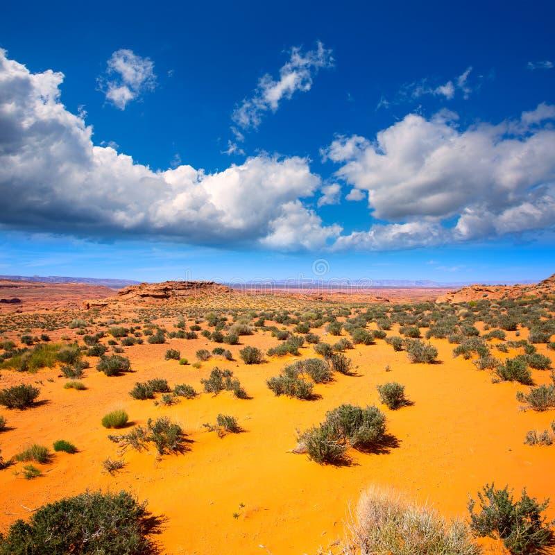 Désert de l'Arizona près du fleuve Colorado Etats-Unis photographie stock libre de droits
