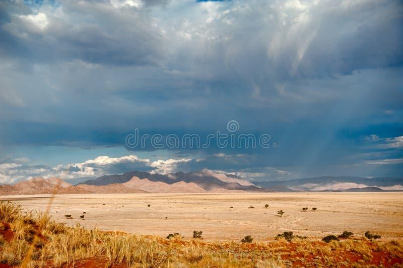 Désert de la Namibie, Afrique photos libres de droits