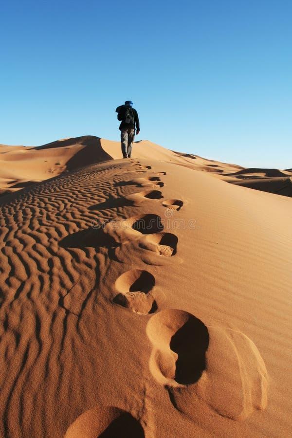 Désert de sable photo stock