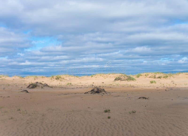 Désert de Sandy sur Kola Peninsula photos libres de droits