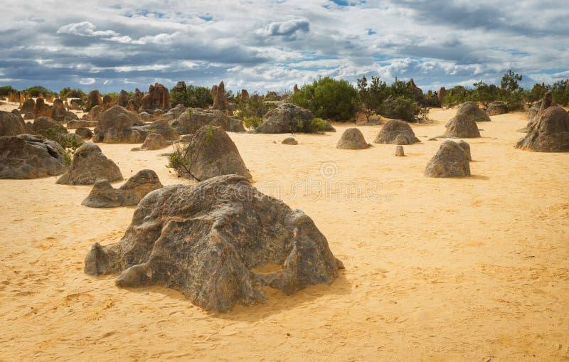 Désert de sommets en parc national de Nambung image libre de droits