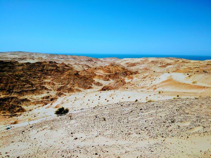 Désert de Sonora avec le golfe de Clara de ¡ de Sabrà photo stock