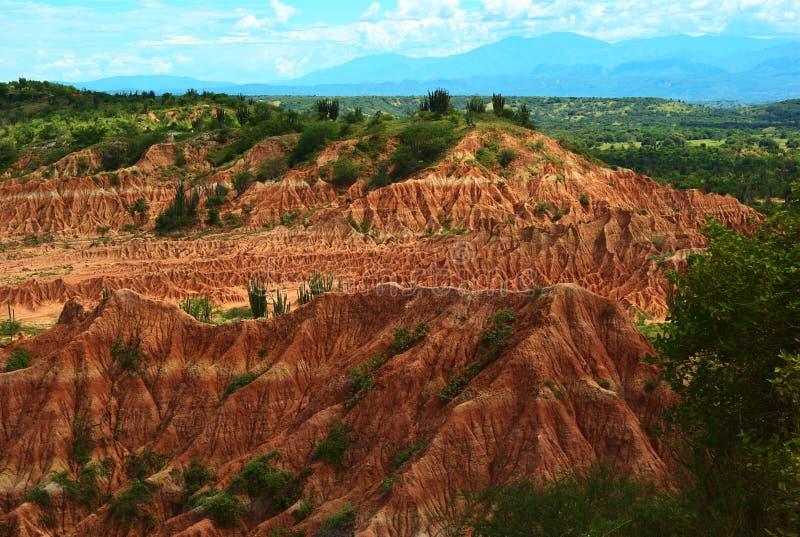 Désert de Tatacoa en Colombie du sud image libre de droits