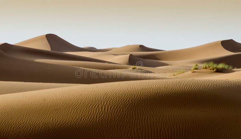 Désert du Sahara, dunes du Maroc image libre de droits