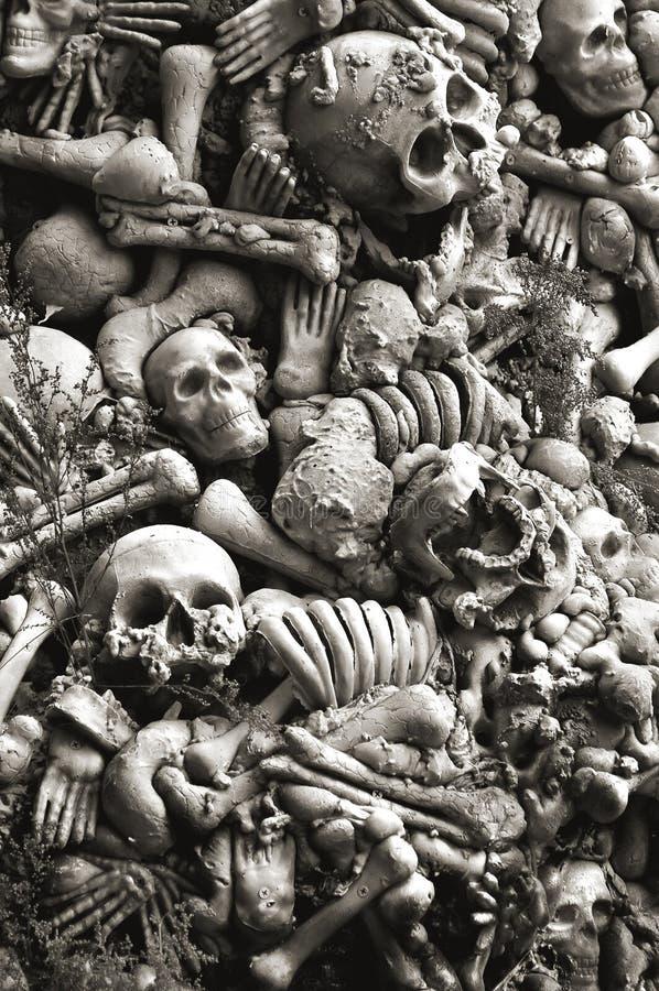 désosse des crânes de veille de la toussaint photos libres de droits