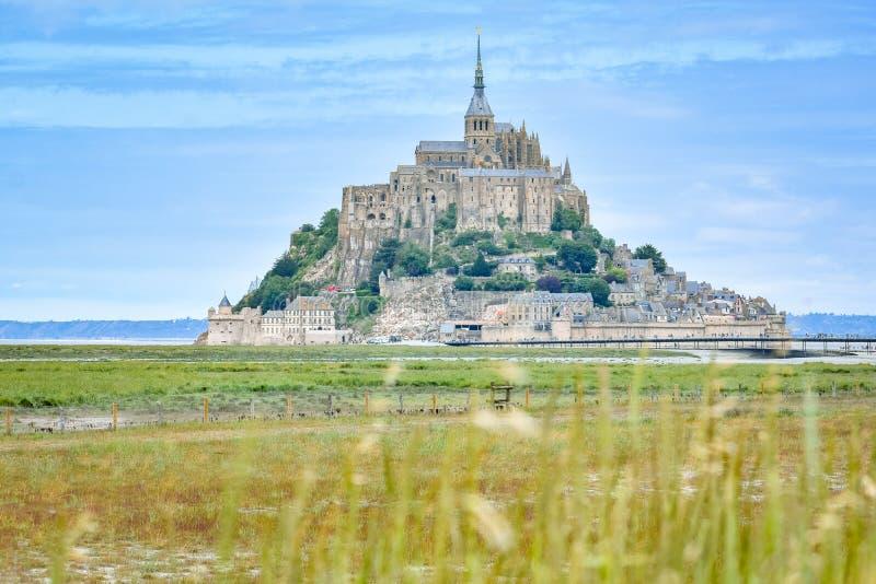 Détail d'herbe dans le premier plan et le Mont Saint Michel, France, à l'arrière-plan photographie stock libre de droits