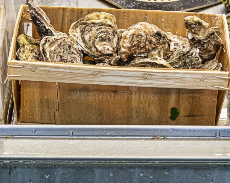 détail d'huître au marché photos stock