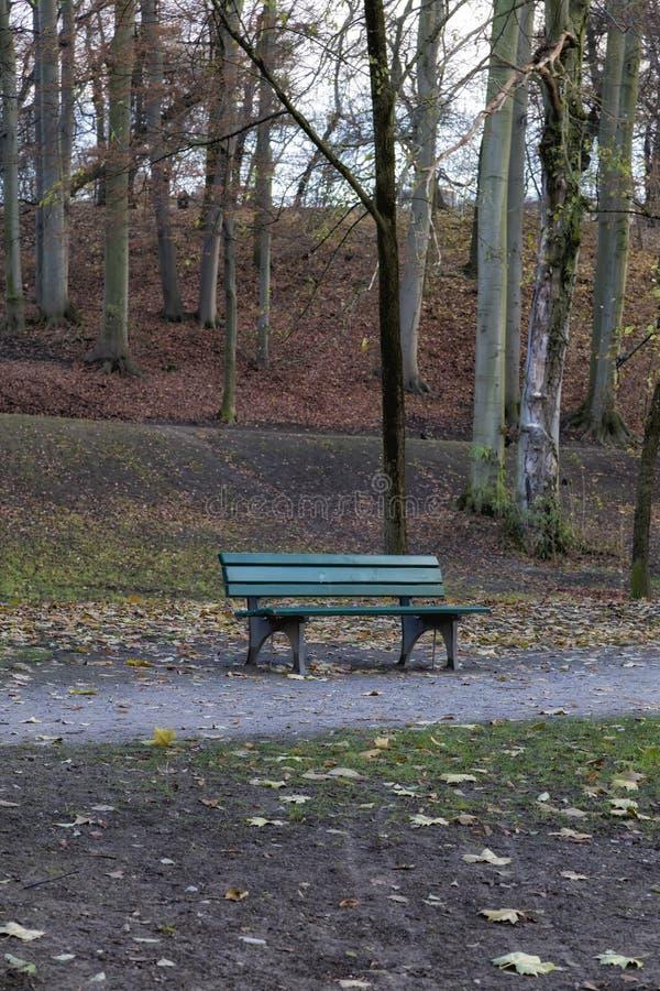 Détail d'un banc en parc en automne photographie stock libre de droits