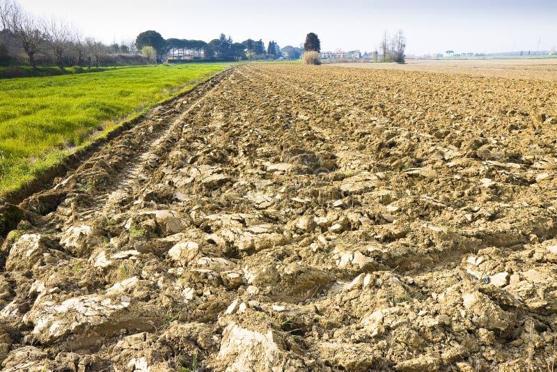 Détail d'un champ labouré dans l'espace de l'Italie de campagne de la Toscane pour l'insertion des textes image libre de droits