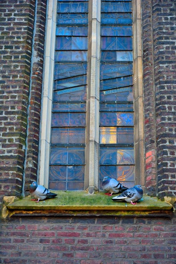 Détail d'une fenêtre d'église souillée par verre photos libres de droits