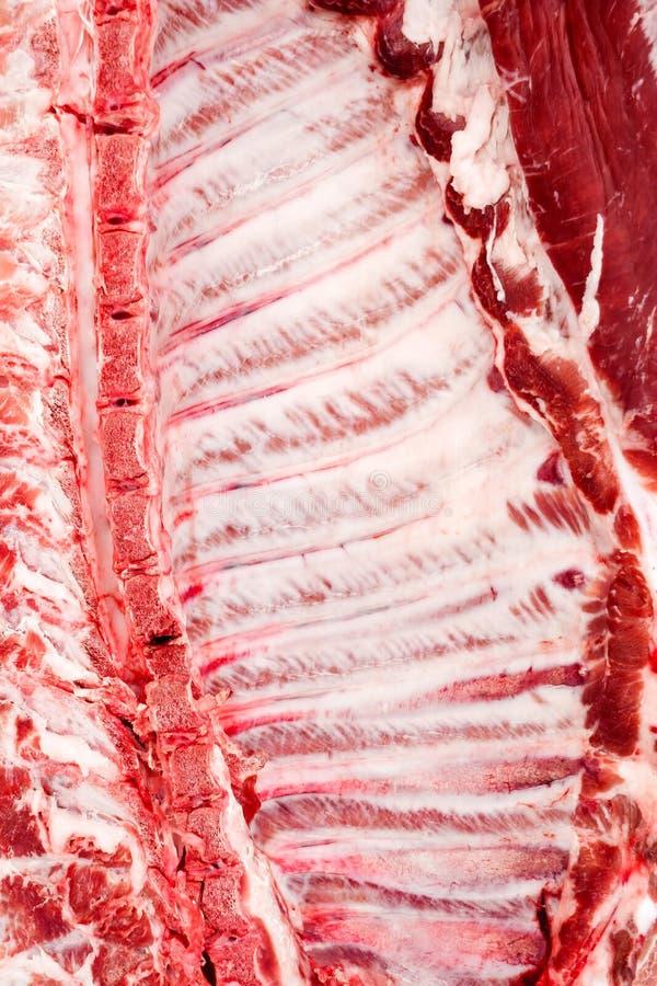 Détail de cage thoracique d'un porc fraîchement abattu Fond images libres de droits