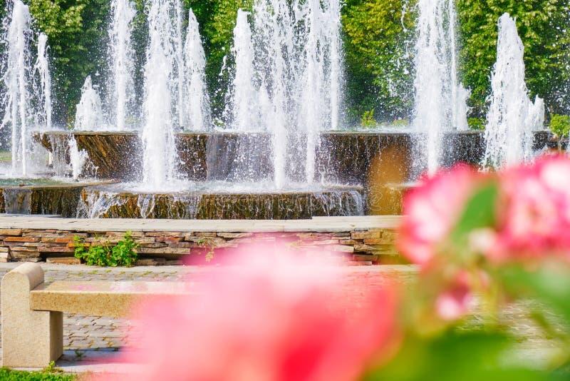 Détail de fontaine artésienne en parc de ville de Bucarest Alexandru Ioan Cuza park/IOR avec roses de corail/roses dans le premie image libre de droits