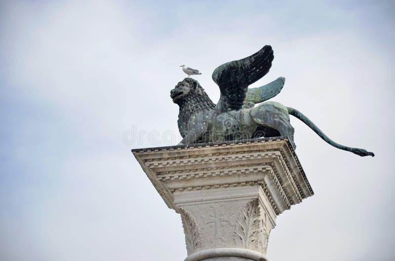Détail de lion et de mouette de Venise photo libre de droits