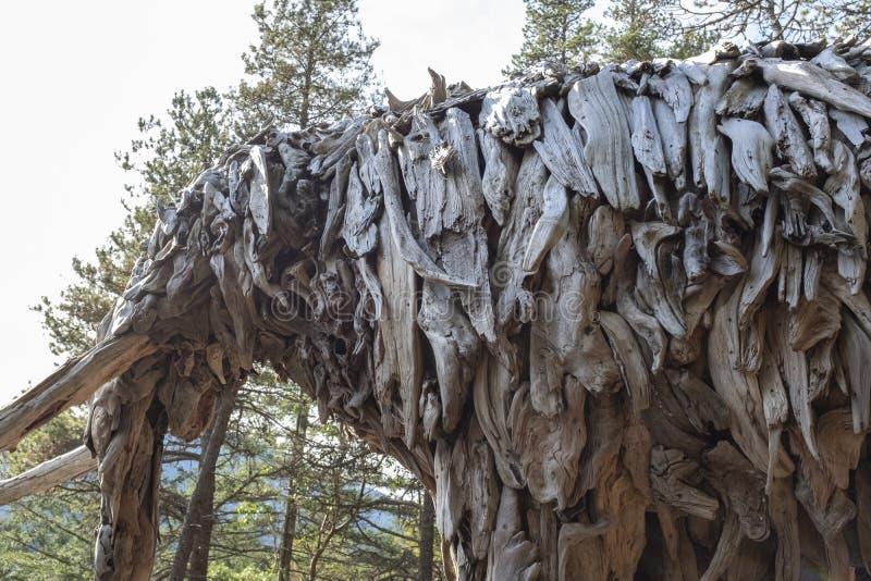 Détail de mastodonte d'île de Bowen par l'artiste Guthrie Gloag image stock