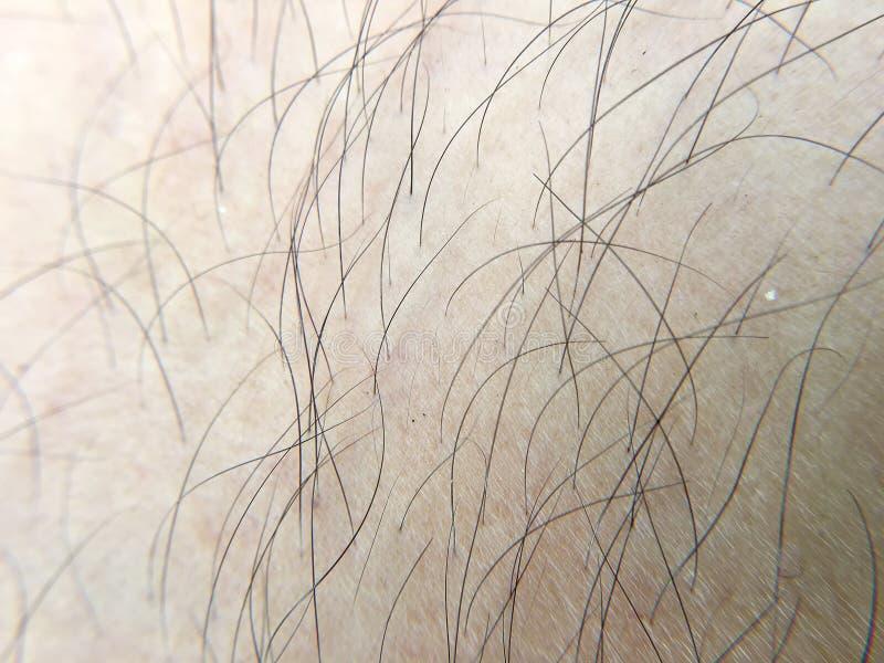 Détail de peau humaine avec des cheveux, plan rapproché, macro image stock