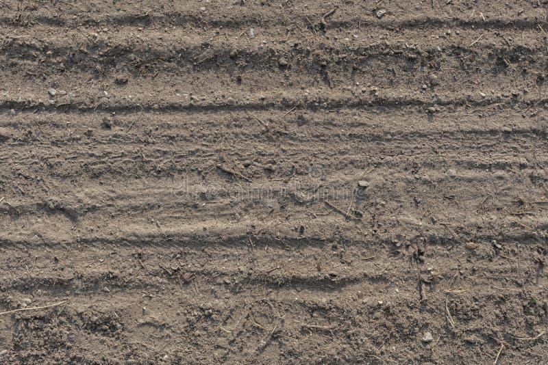 Détail des voies de pneu dans le désert de sable photos libres de droits
