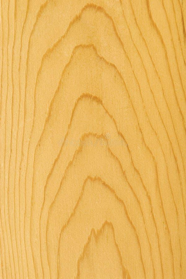Détail en bois de pin images stock