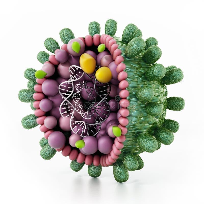 Détail structurel du virus de l'hépatite B d'isolement sur le blanc illustration 3D illustration de vecteur