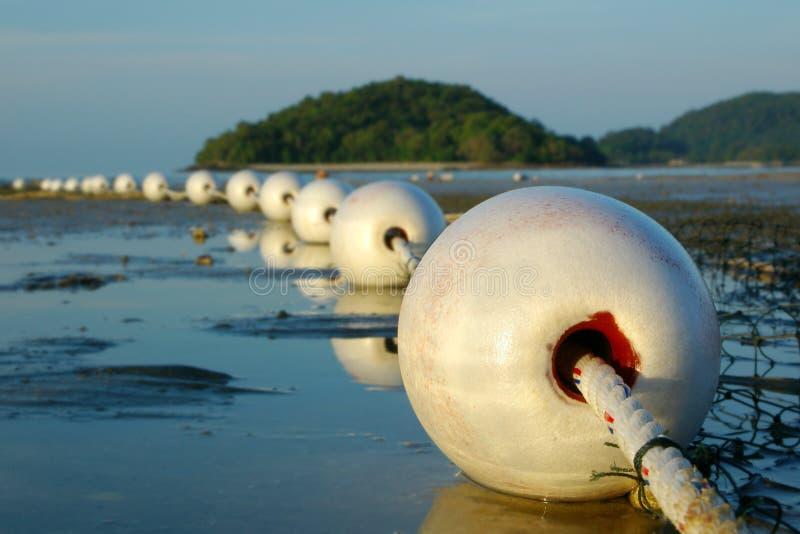 détaille le filet de pêche photo libre de droits