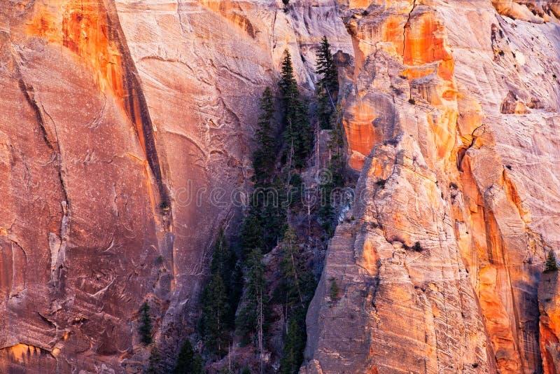 Détaillez la vue de paysage des murs de montagne en parc national de Zion, Utah images libres de droits