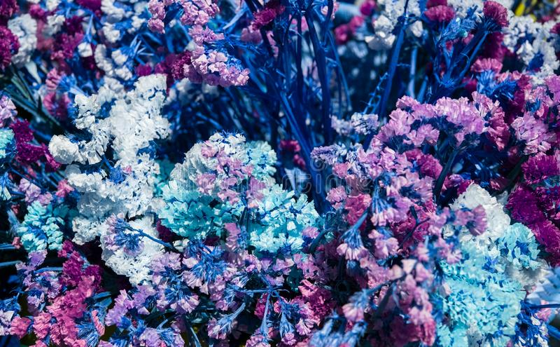 Détails d'une disposition de fleurs ornementale sèche photo libre de droits