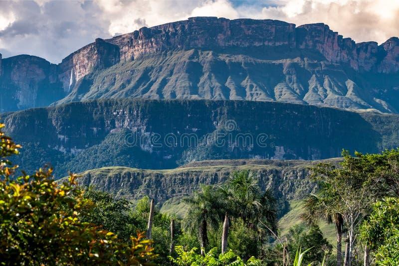 Détails de montagne d'Auyantepui, Venezuela images libres de droits