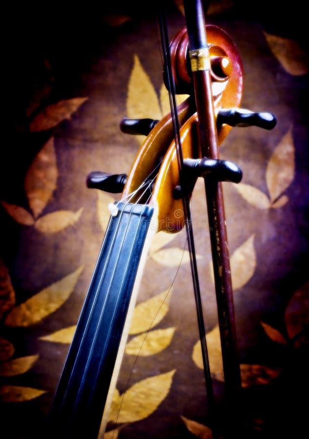 Détails de violon photos stock
