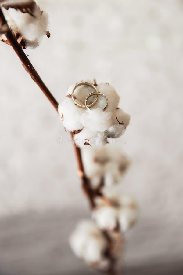 Détails nuptiales - des anneaux de mariage sont mis sur des fleurs et des brindilles tandis que jeune mariée étant prête avant la photographie stock