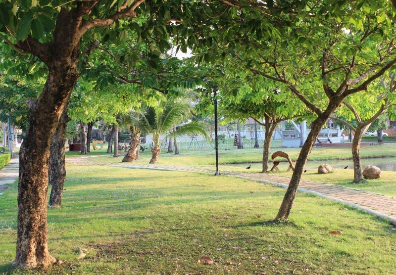 Détendez le parc dans le matin photo stock