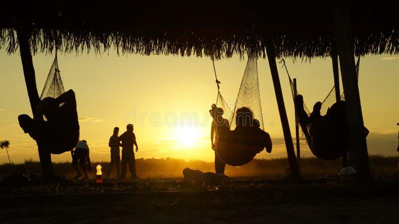 Détente de touristes dans des hamacs pendant le coucher du soleil au parc national de Madidi en Bolivie photos libres de droits