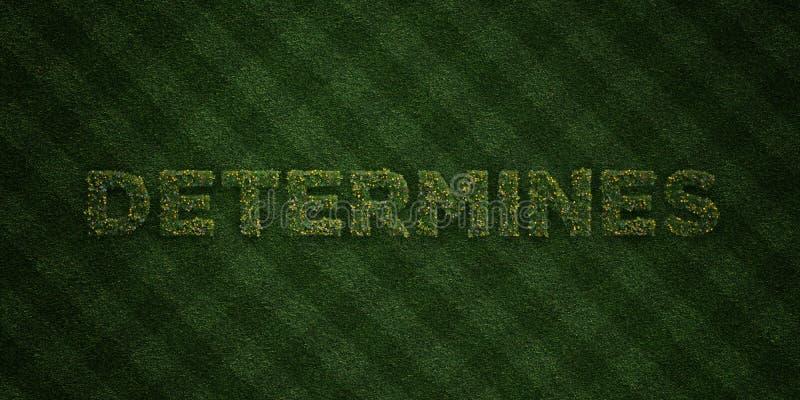 DÉTERMINE - lettres fraîches d'herbe avec des fleurs et des pissenlits - l'image courante gratuite de redevance rendue par 3D illustration stock