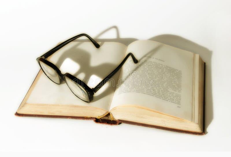 Dévoreur de livres image libre de droits