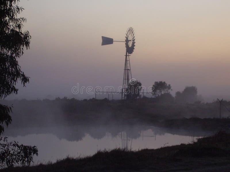Día australiano de la niebla fotos de archivo