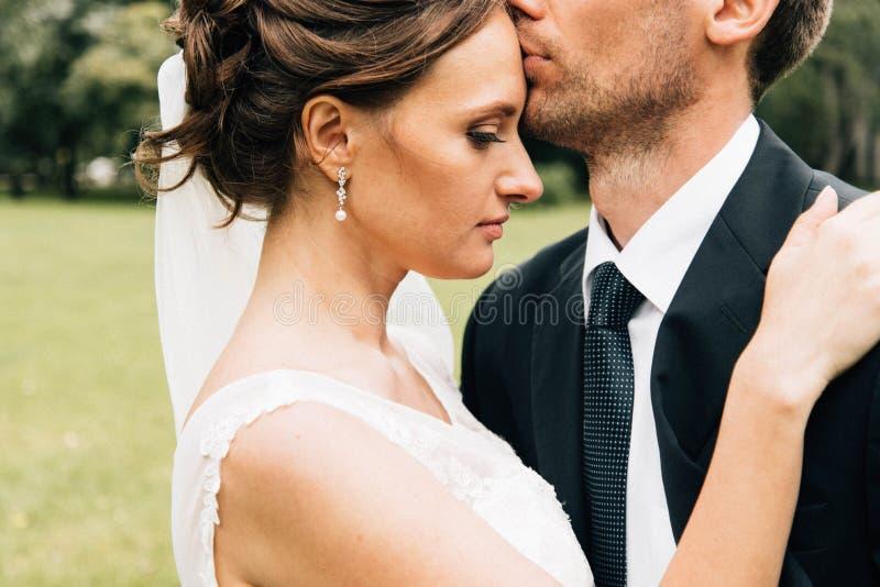 Día de boda feliz Retratos de boda imagen de archivo libre de regalías