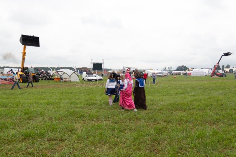 Día de fiesta agrícola en la costa báltica imagenes de archivo