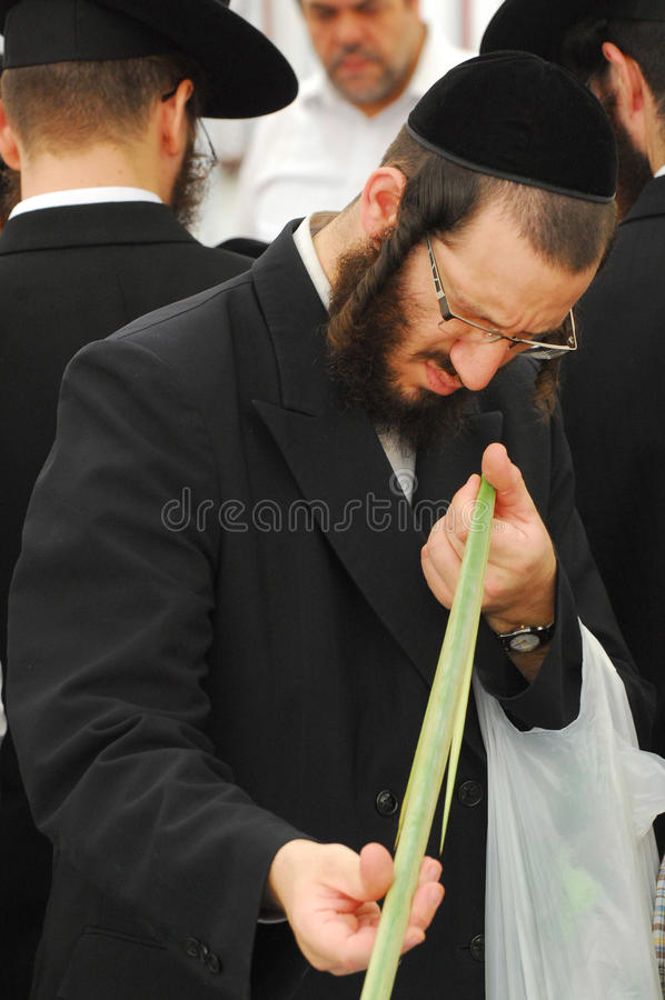Día de fiesta de Jewsih - Sukkot imagen de archivo