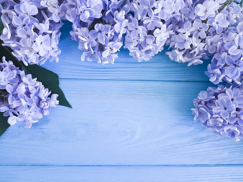 Día de fiesta fresco hermoso del regalo del día de madres del aniversario del saludo de la decoración de la lila en una frontera  fotografía de archivo