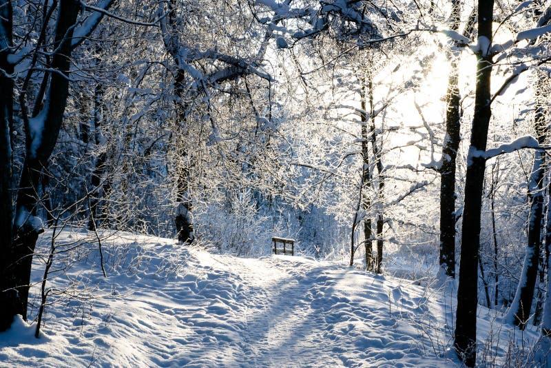 Día de invierno imagen de archivo
