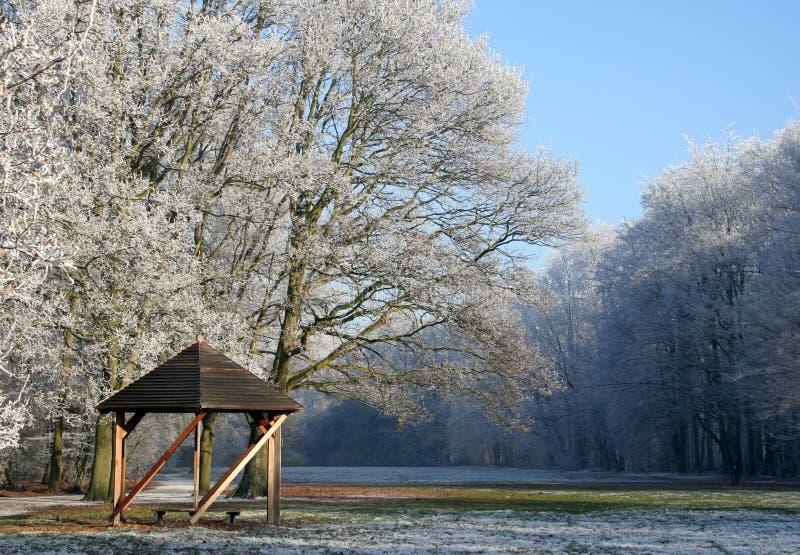Día de invierno asoleado fotografía de archivo