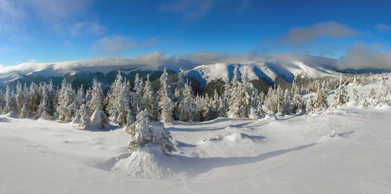 Día de invierno brillante en las montañas fotos de archivo