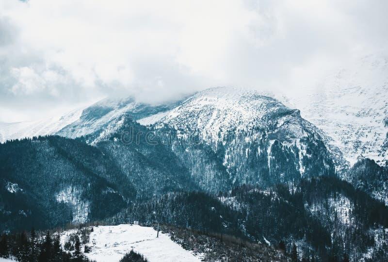 Día de invierno brumoso con nevadas fuertes en picos de las montañas de Tatra Visi?n panor?mica imagen de archivo libre de regalías
