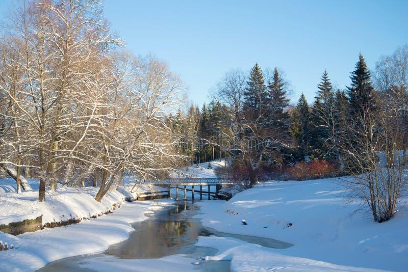 Día de invierno en el río Slavyanka Parque de Pavlovsk foto de archivo libre de regalías
