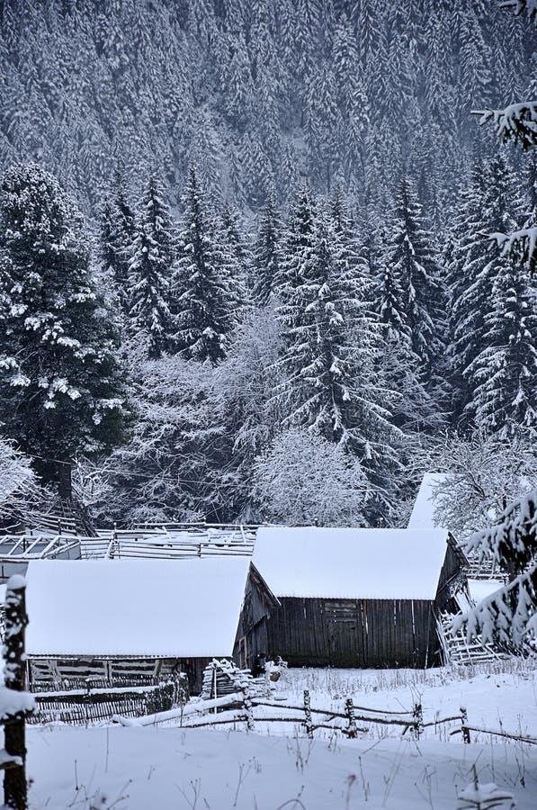 Día de invierno hermoso en montañas foto de archivo