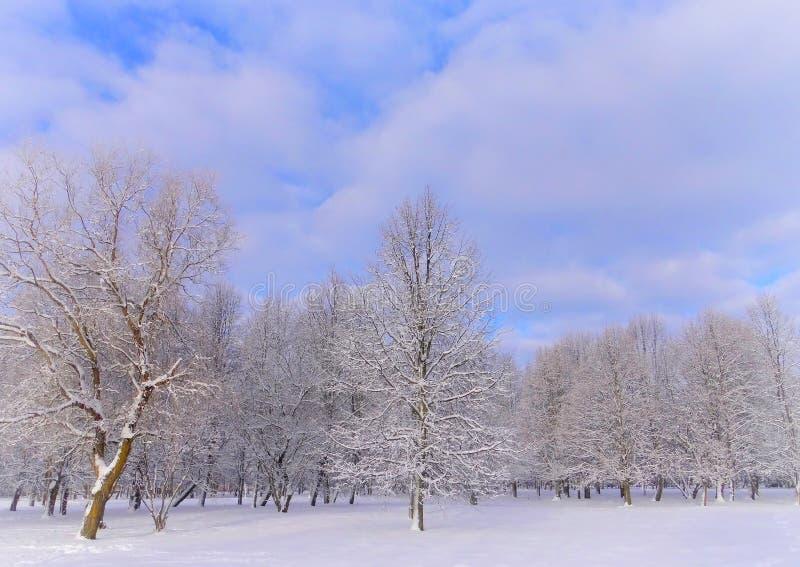 Día de invierno soleado brumoso en Lituania fotos de archivo