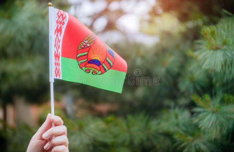Día de la Independencia disponible de la bandera bielorrusa, concepto del día de la bandera imagen de archivo libre de regalías