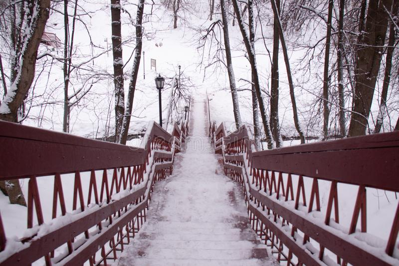 Día de la nieve del invierno de Moscú Rusia en un parque de la ciudad fotos de archivo libres de regalías