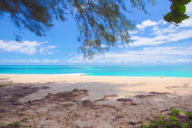 Día de la playa imágenes de archivo libres de regalías