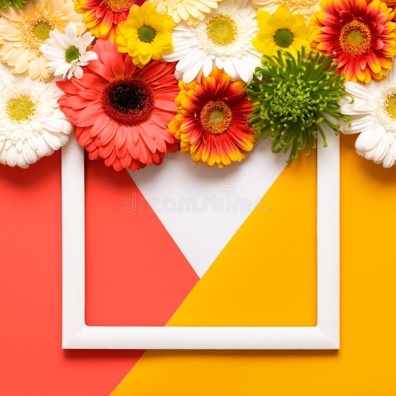 Día de madres feliz, día para mujer, día de San Valentín o cumpleaños viviendo a Coral Pantone Color Background Tarjeta de felici fotos de archivo